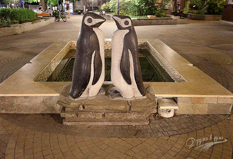 The penguins fountain