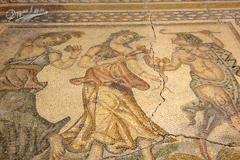 Регионален исторически музей: част от изящните мозайки