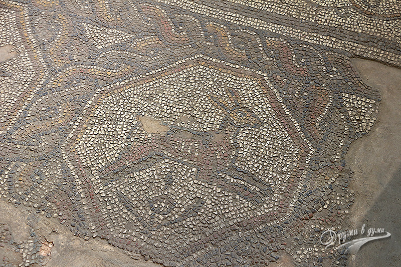 Мотиви от античните мозайки от частен дом
