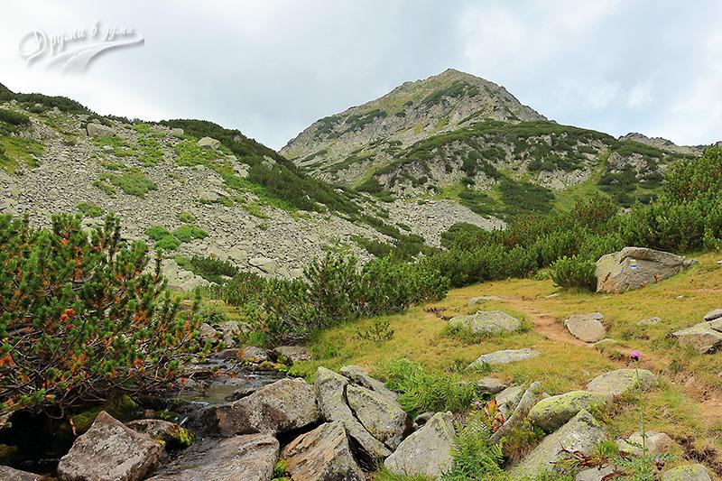 По пътеката: Муратов връх се открива
