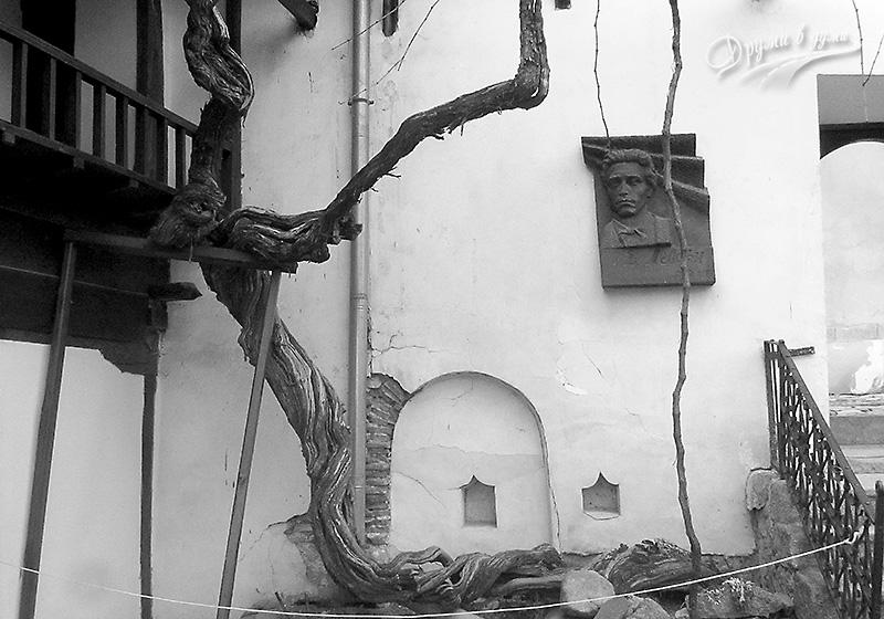Девически манастир в Сопот - старата лоза