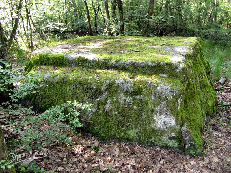 Скален феномен Дялан камък
