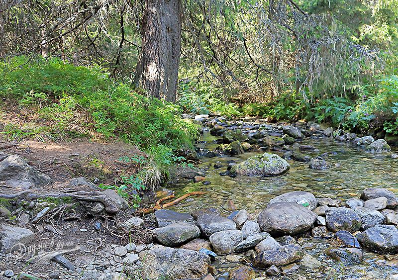 Пътеката пресича този живописен поток -  Горна Прека река - и продължава нагоре по склона