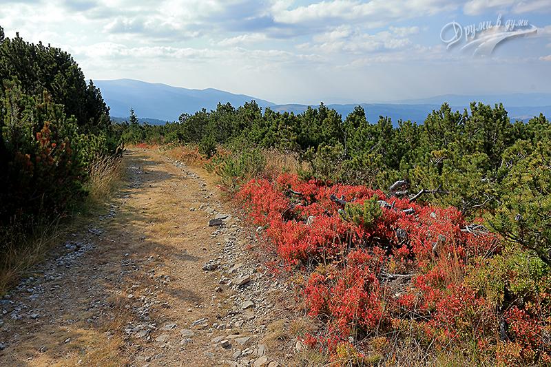 По Кайзеровия път - есента се показва
