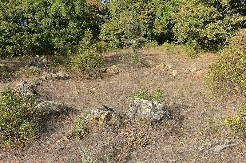 Тракийско светилище - село Евренозово