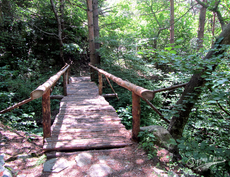 The wooden bridge before the waterfall