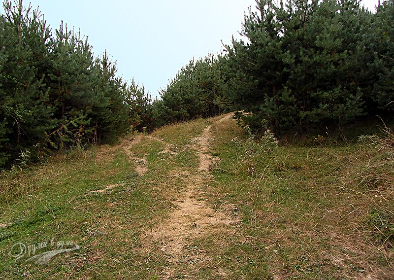 Разклонение след поляната - държим дясно