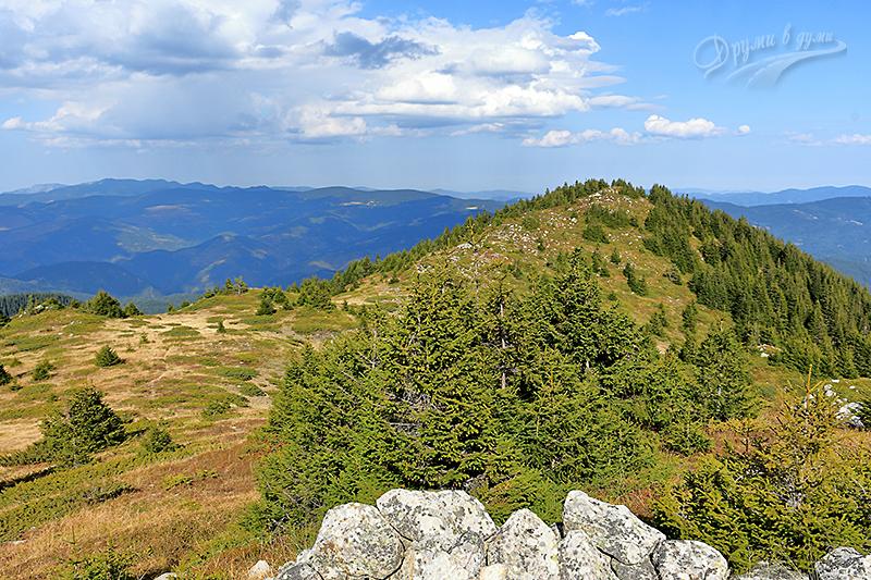 Съседният връх Шилестата чука