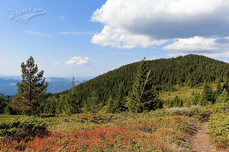 По пътеката - цветни багри на 2000 метра височина