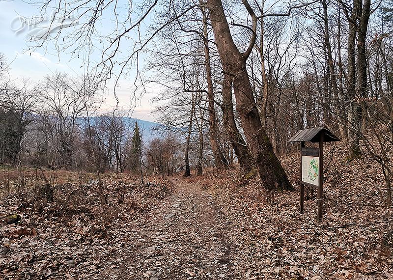 В началната част от пътеката към водопад Яворница