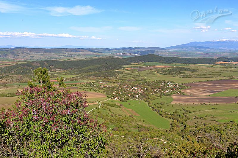 Между село Ребро и връх Любаш по синята маркировка