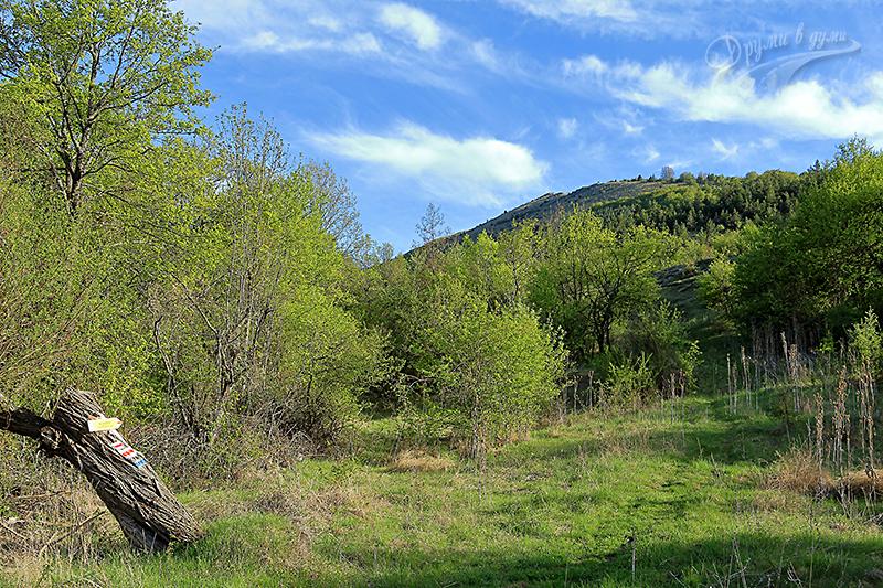 Начало на пътеката към връх Любаш от с. Лялинци