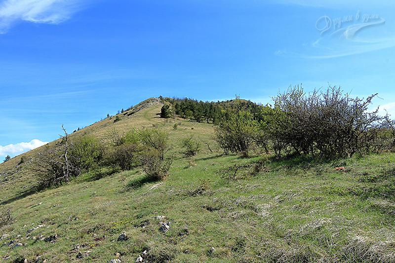 Нагоре към връх Любаш