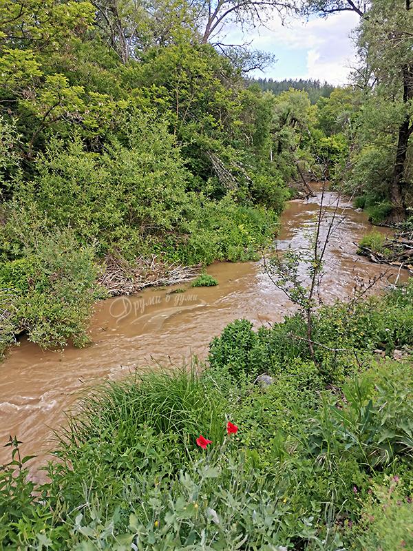 Река Нишава пред Чепърлинския манастир