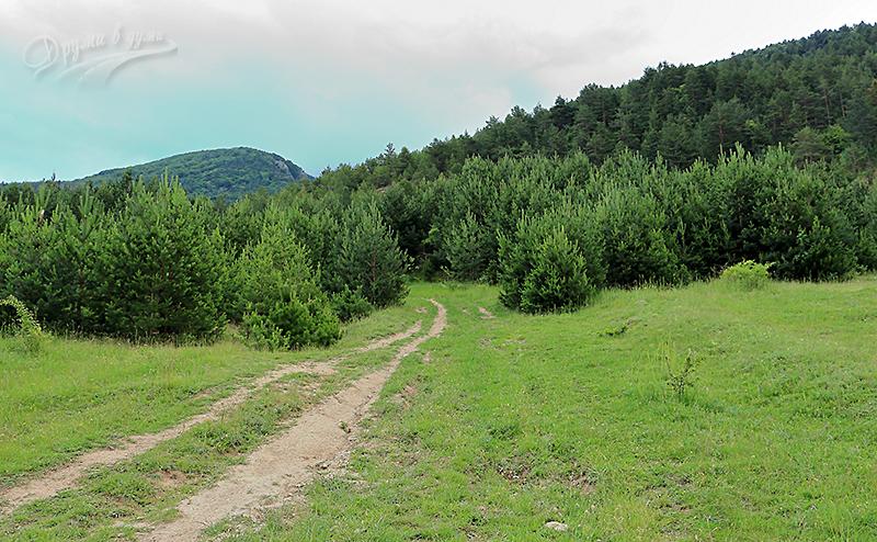 В началото на маршрута към връх Големия камък