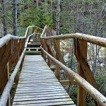 Beli Iskar Eco Trail in Rila Mountains