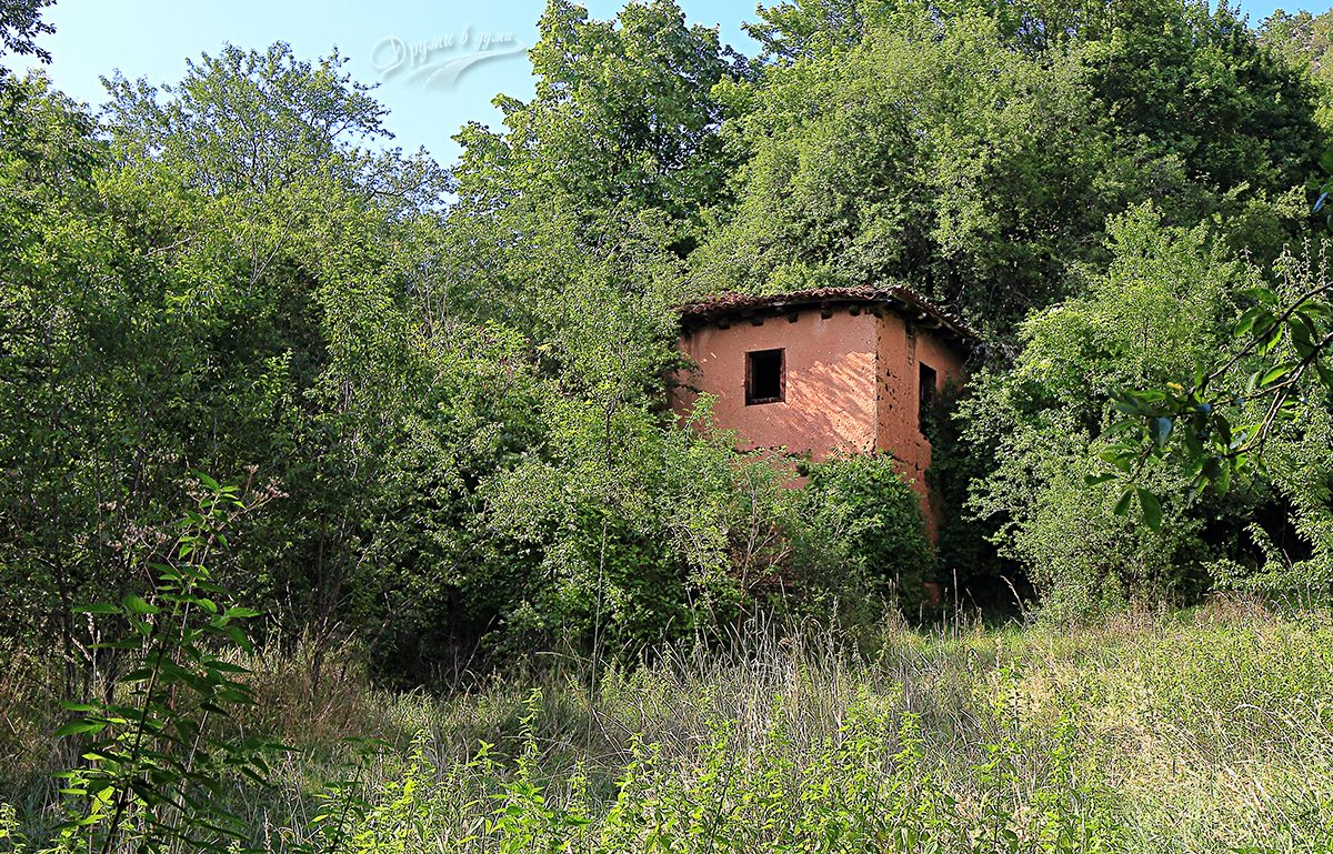 На слизане от връх Руй: една от последните къщи на село Зелениград