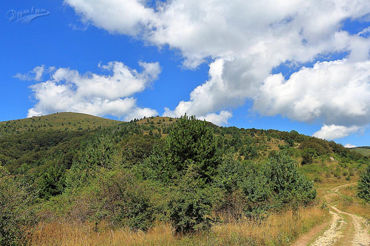 Пътеката след гората - първите гледки надалеч, връх Руй в далечината