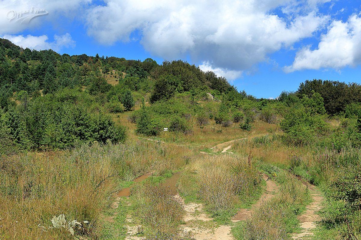 Разклонът: надясно е към хижа Руй, наляво - право към върха
