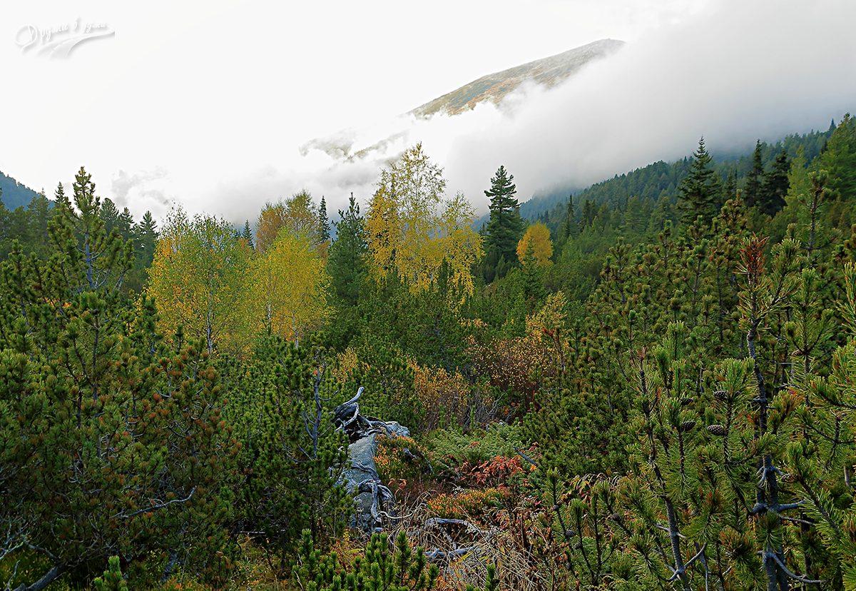 Есен в Рила