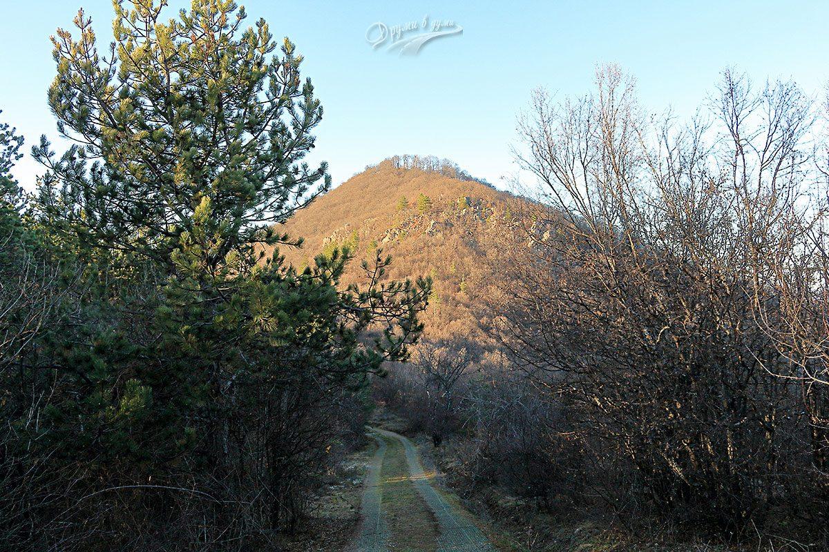 По маршрута - връх Голям Боровец вече се вижда
