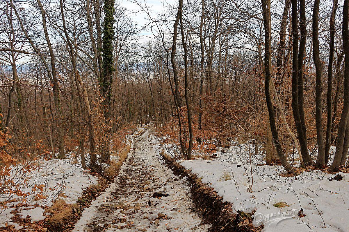 По пътеката към връх Дупевица