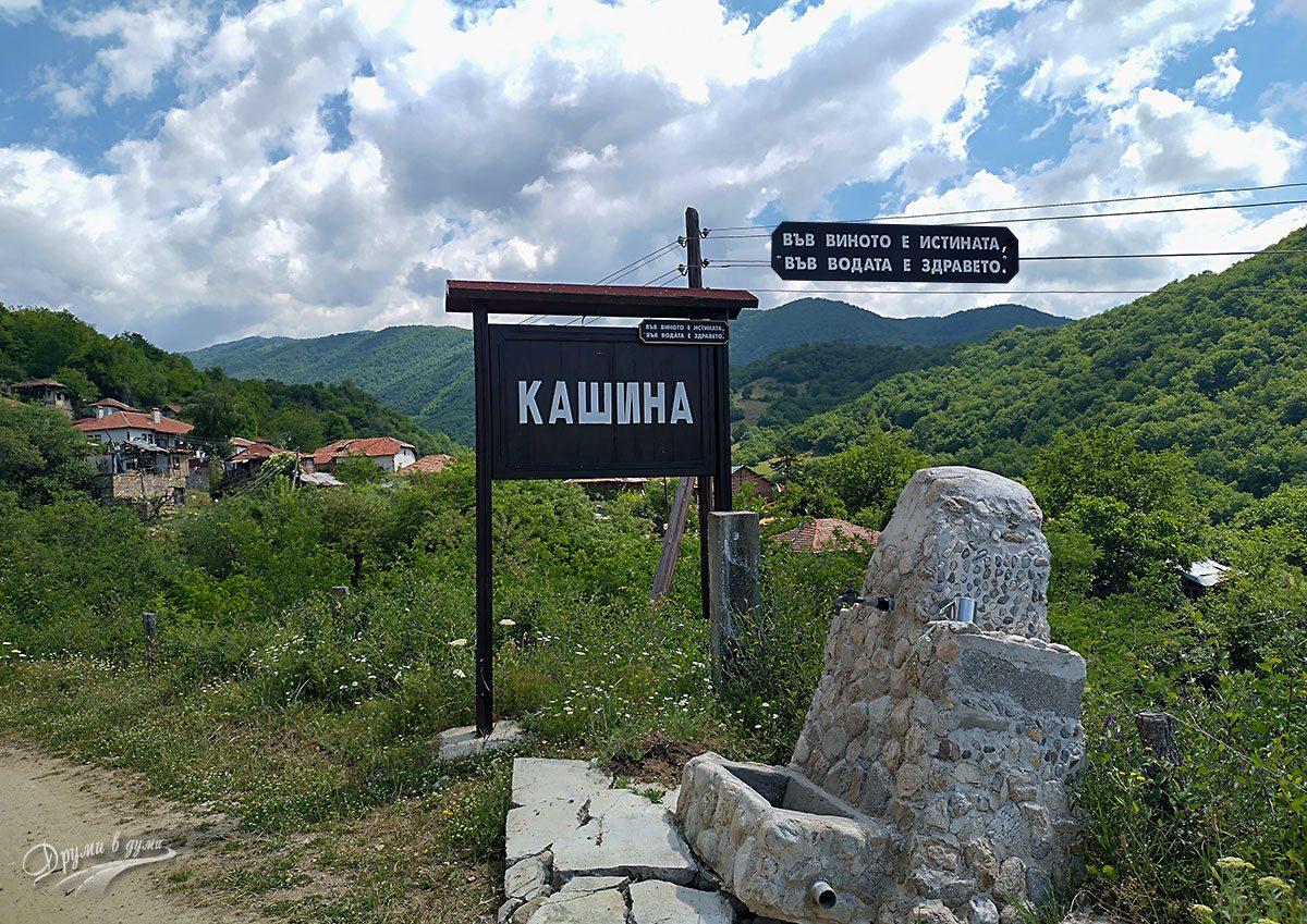 Добре дошли в Кашина!