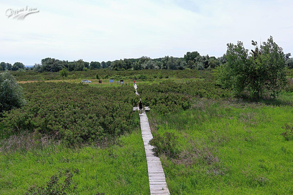 Природен парк Персина: пътеката към платформата за наблюдение